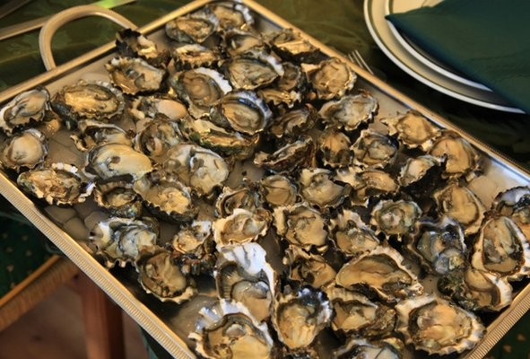 加州健康官員提醒謹慎食用海鮮