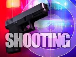 Oakland驾车枪击案 七人受伤