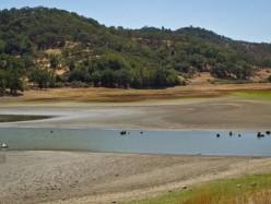 170000與90:水庫面臨幹涸險境