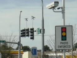 紐約測速攝像頭疑變政府財源一天罰7.5萬美元
