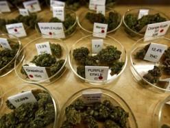 Oakland終止基於吸食大麻的招聘歧視