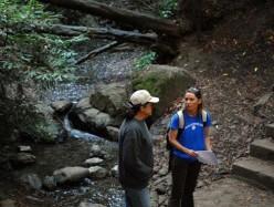 Oakland下水道廢水溢流進Sausal Creek