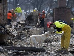 Santa Rosa被火毀社區Coffey Park已重建首棟房子