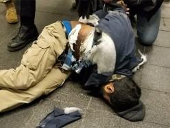 恐襲! 紐約車站爆炸  嫌犯來自孟加拉